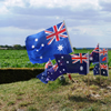 Flags the Windmill Pozieres